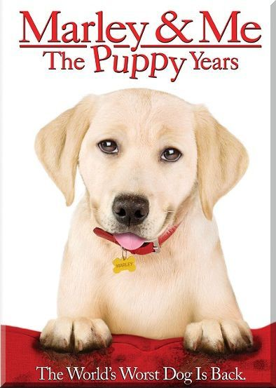 Marley---Me-The-Puppy-Years.jpg