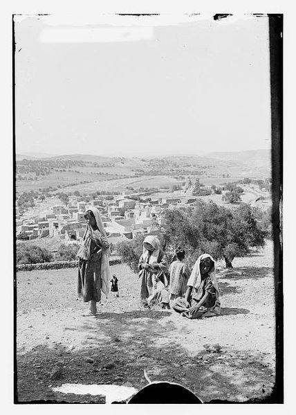 Mount of Olives, Bethany from the Slopes of Olivet, approximately 1900 to 1920