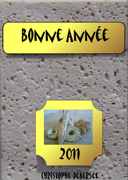 voeux-2011.png