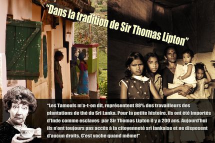 2. Dans la tradition de Sir Thomas Lipton