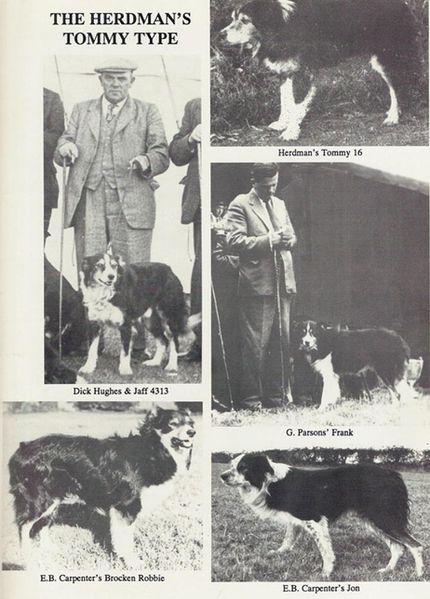 herdmans-tommy-type.jpg