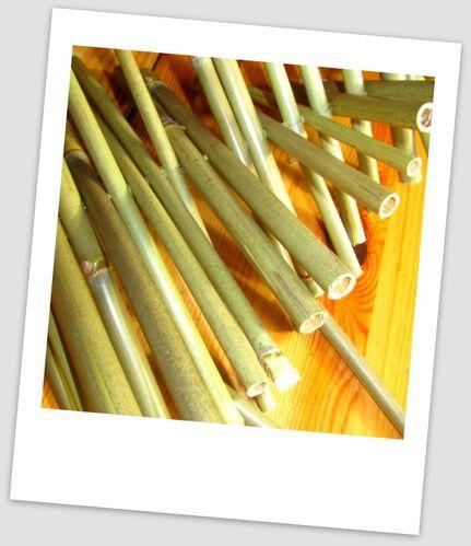 ide bricolage avec bambou bricolage avec du bambou tout tuteur bambou droit nortene h m leroy. Black Bedroom Furniture Sets. Home Design Ideas