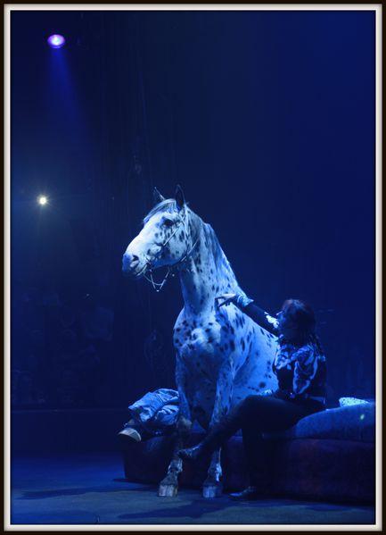 Cirque-Arlette-Gruss-2012--28-.JPG