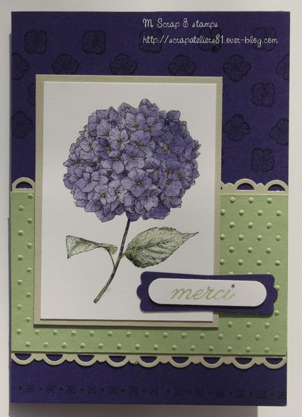 carte123 Belles attentions hortensia