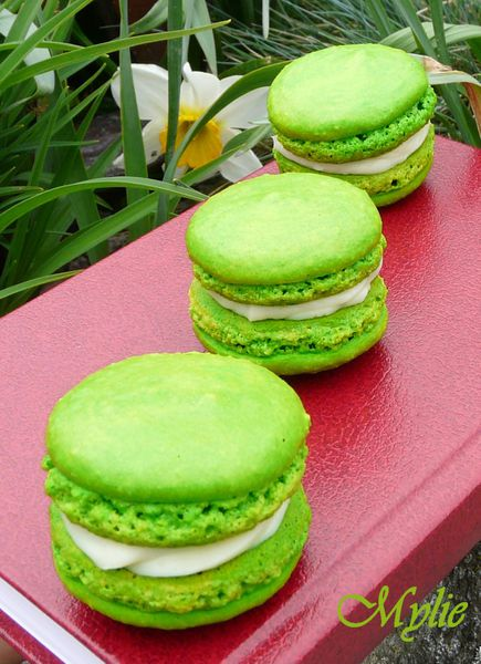 macarons au citron vert le blog de les naissances culinaires de. Black Bedroom Furniture Sets. Home Design Ideas