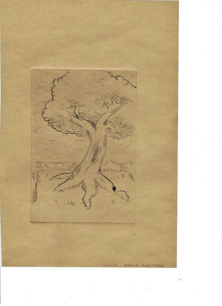 Gravure-trav.1-003[1]