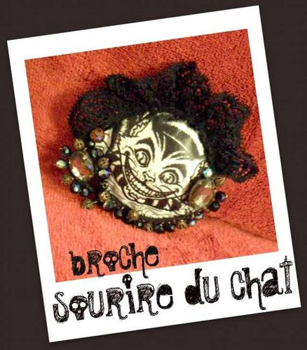 broche sourire du chat PhotoRedukto