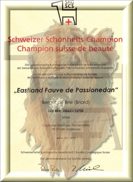 diplome CH Suisse