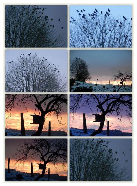 2011-01-28-28.01.JPG