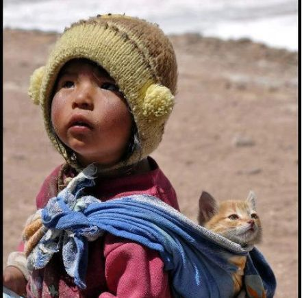 bolivien-et-chat.JPG