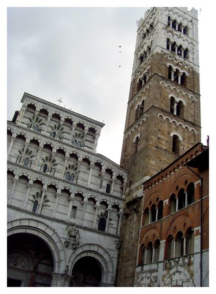 14 - Lucca (12)