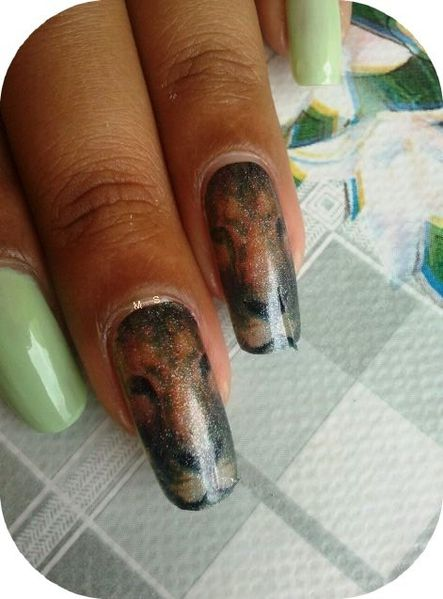nail patchs lion (4)