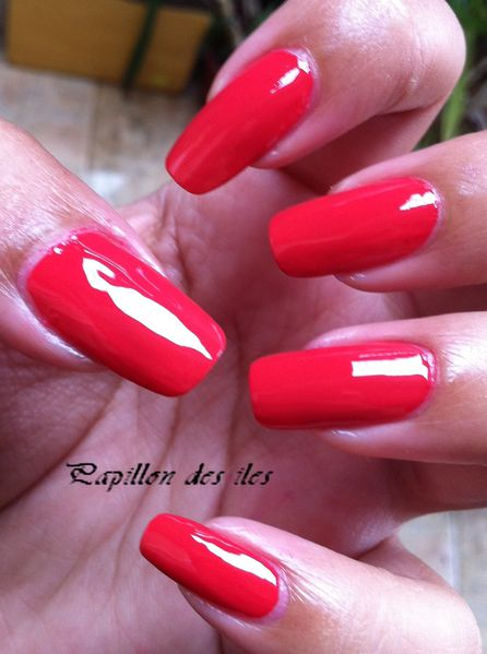 OPI-LUNCH-AT-THE-DELHI 6073