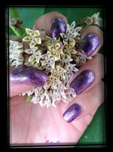 ongles 4 246