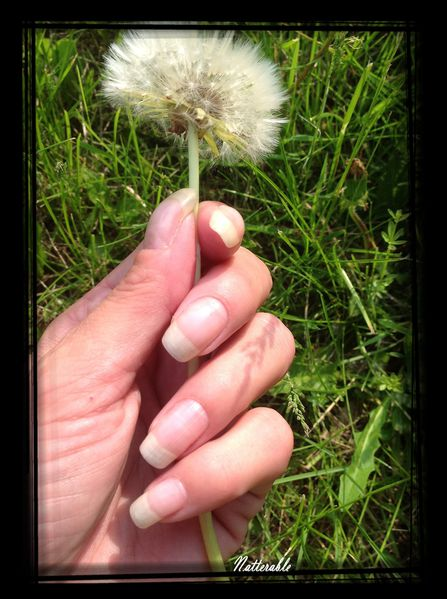 ongles 171