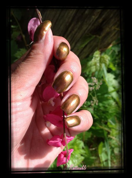 ongles 076