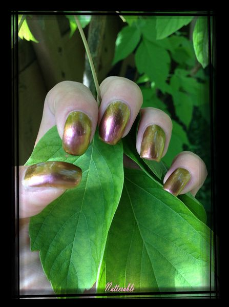 ongles 081
