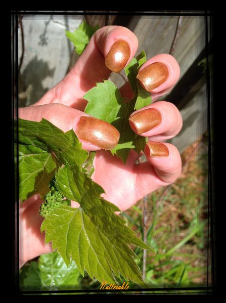 ongles 230