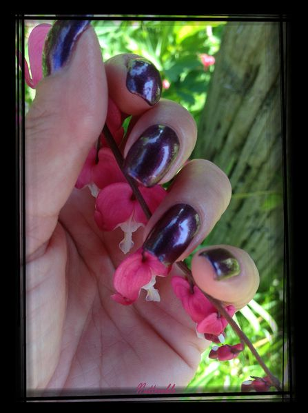 ongles 181