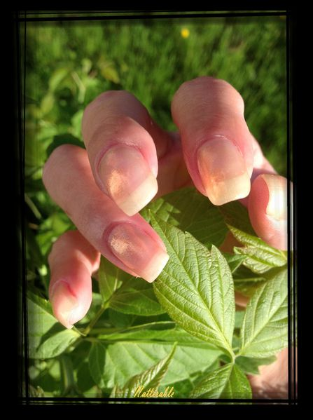 ongles 188
