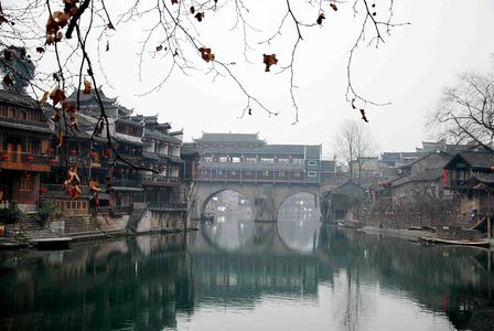 fenghuang-1 0011-small