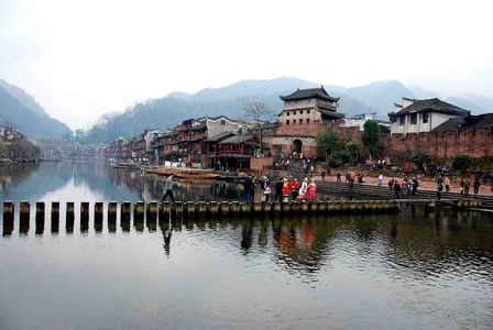 fenghuang-2 0254-small
