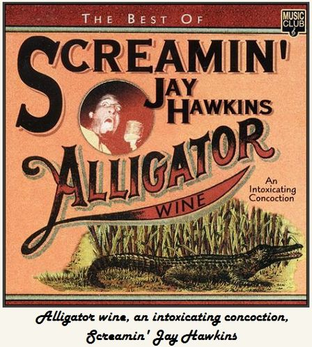 Album-Screamin-Jay-Hawkins-Alligator-Wine.jpg