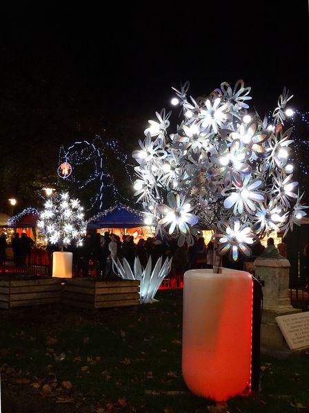 Fête des Lumières 2014 Place Carnot 2