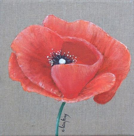 tableau-coquelicot-20x20.jpg