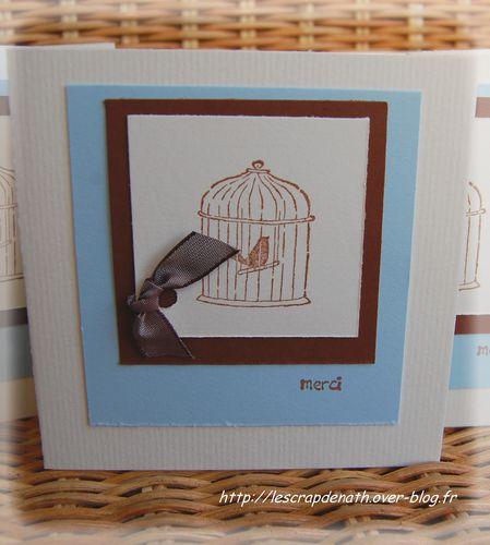 cage-oiseau.JPG