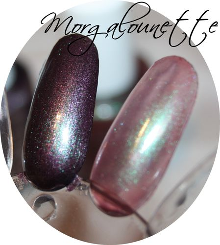 AVON color trend morgalounette (5)