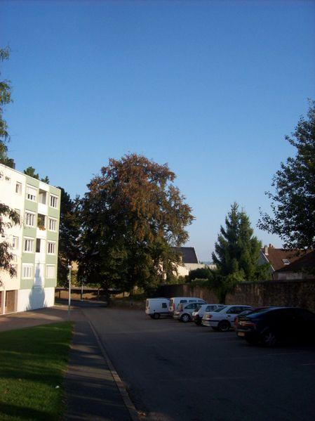 Rue Harold de Fontenay - 100 3314 (Copier)