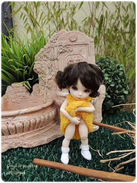 009Griotte en jaune (08)