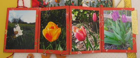 pages-de-scrap-0683-bis.jpg