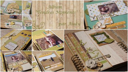 Audy-Tendres-Moments