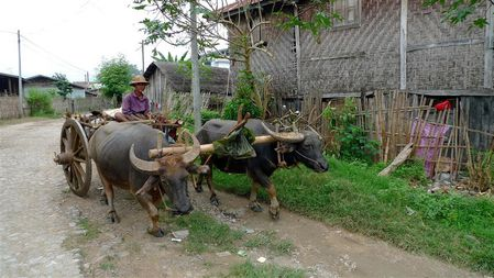 Hsipaw (3) (Small)