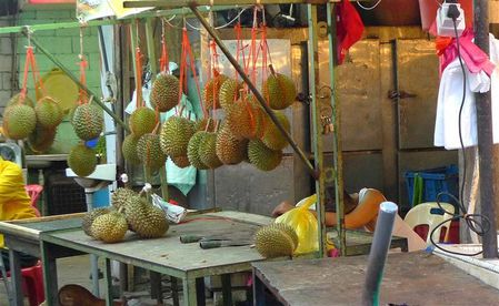 les-durians--Small-.JPG