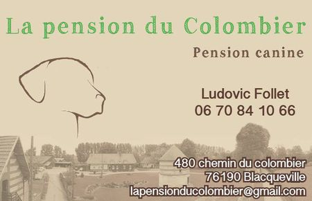 Pension-du-Colombier-BLACQUEVILLE-01.jpg
