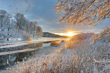 saison hiver lumiere or 596
