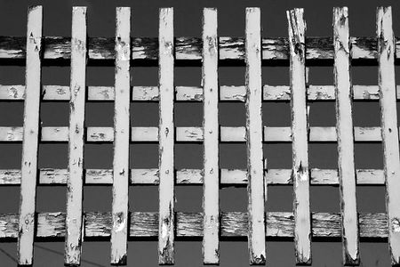 noir-et-blanc-thierry-weber-147.jpg