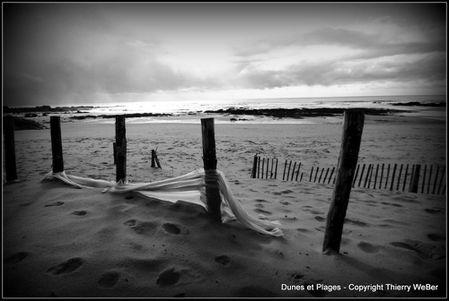 dunes et plages (2)