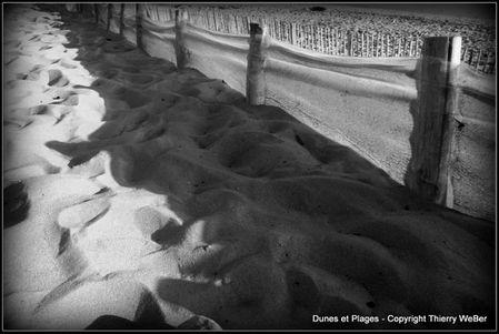 dunes et plages (9)