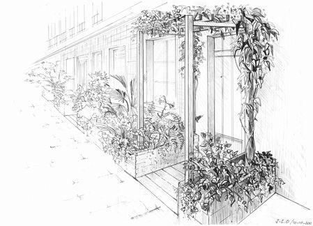 Dessin paysager projet terrasse parisienne Silvère Doumayr