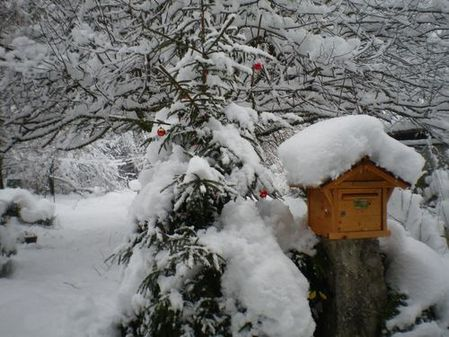012015_neige--2-.JPG