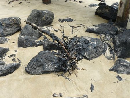 pointe-noire-plage-pollution-2012