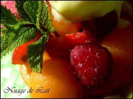 melon gourmand 2010 014-1