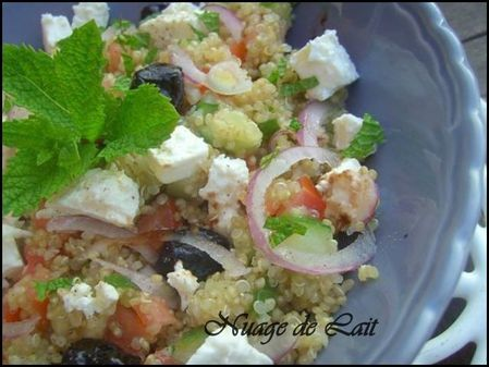 salade de Quinoa fa+on salade Grecque 002-1