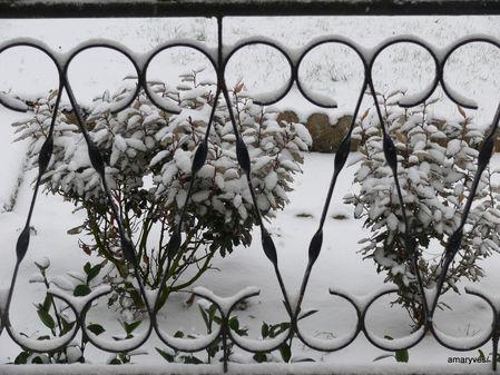 neige-17122009-005.JPG