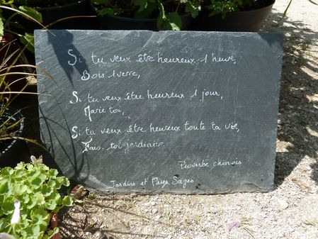 POCKET GARDENS PROVERBE
