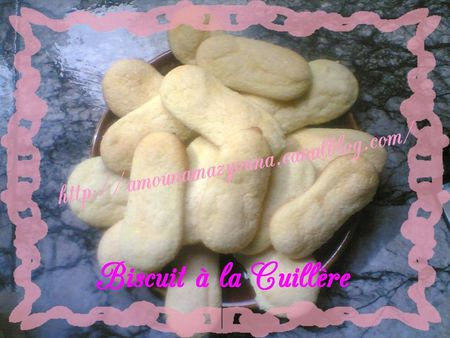 Biscuit___la_cuill_re_013_
